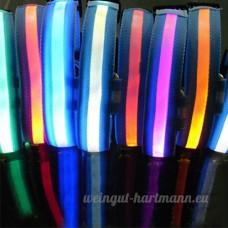 Pet Nuit Sécurité Collier LED pour chien en nylon à LED clignotante pour - B00KBPZCZC