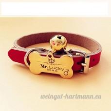 Chien carte d'identité carte personnalisée Golden Retriever Teddy chien collier pour animaux lettrage Laser personnalisation de marque chat Collier cloche   010   XL - B07BQQ78QB