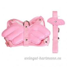 Parkinoon Aile d'angle réglable pour petits animaux de compagnie Harnais laisse Sangle en nylon (Rose Taille: S) - B01MYPISKV