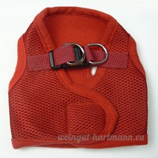 WYF No Pull Puppy - Pet Carrier - Maille Respirante - Sangle De Poitrine - B07CTKWMTK
