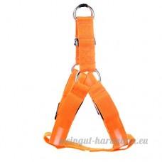 Qbuds Laisse Harnais réglable facile Chien Marche Harnais Sangles avec lampe LED pour animal domestique Ceinture de sécurité Tether - B07CNCFQPV