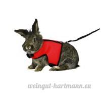 Asocea réglable Soft Harnais avec laisse extensible pour Bunny Cat - B078X4P5CB