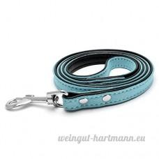 ALCYONEUS 120 Cm Laisse De Chien Faux En Cuir Chiot Animal De Compagnie De Marche Formation Corde De Plomb (Bleu) - B075CJZWY1