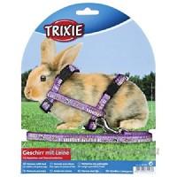 Trixie Harnais avec Laisse en nylon pour lapin et petits rongeurs - B003TOIY34