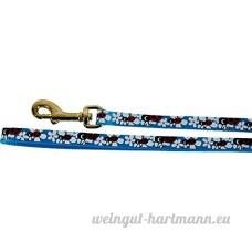 SAINT BERNARD Ladybug Laisse en Nylon pour Chat Rose/Bleu/Vert 1 m - B078HQKBKH