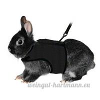 Bwogue Soft Harnais avec laisse extensible pour lapins - B071VNL4YW