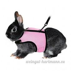 Bwogue Soft Harnais avec laisse extensible pour lapins - B071NWPRRN