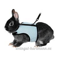 Bwogue Soft Harnais avec laisse extensible pour lapins - B071HQNKXB