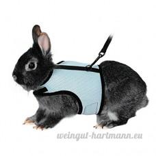 Bwogue Soft Harnais avec laisse extensible pour lapins - B071F4XHVJ