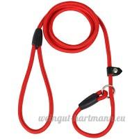 Digiflex Laisse Rouge Anti-Dérapante Collier Durable Réglable en Nylon et Coton pour Dressage de Chien - B06ZY6FK7B