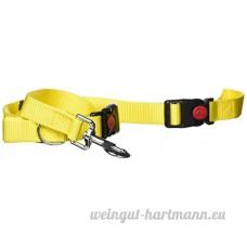 Sourcingmap nylon réglable Collier pour chien Laisse avec clip - B017DEY38A