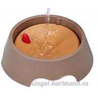 Eau potable de la fontaine ne Imbiber le chat de chien qui boit de l'eau du cercle - B071VH7SGM
