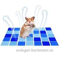 Petacc Tapis Rafraîchissant pour Hamster/Petit Animaux Refroidissement Tapis D'été pour Hamster/Petit Animaux (L) - B07D1JVP1C