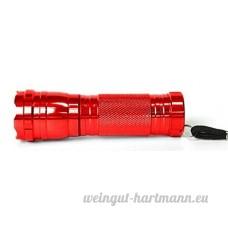 L&R Lumière UV Urine pour animaux de compagnie tache détecteur chien Stain Remover Flashlight trouver sec les taches sur tapis sol de punaises de lit Finder Remover azurage fluorescents Agents monnaie LED - B07BLR27LF