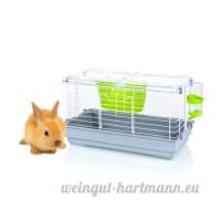FOP Bugs Cage pour Grand Rongeur Transparent/Gris 58 x 32 x 34 cm - B00JSPXFP0