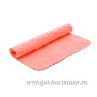 Zaote Rongeur Animaux Hamster Absorbent Serviettes avec Effet Anti-moisissure Anti-bactérien pour Petits Animaux Couleur aléatoire - B076V8R8D9