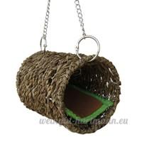 Jouet Cage Perroquet Nid Oiseaux Hamac De Petit Animal De Compagnie Avec Tapis Pour Souris Cavia Cobaya Chinchilla - B07CZ3X1Q2