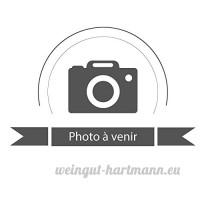 ZOOSTAR Shampooing Demelant Poils Longs Pour Chiens Et Chats 200ml - B01MY6YI4W