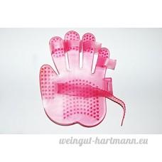 handförmig Brosse de massage chien Salon Baden Palm Brosse - B00WSW6OWQ