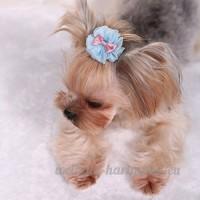 Distinct® 2pcs fait à la main chien chat accessoires de cheveux chiot cheveux bowknot dentelle fleur fournitures de toilettage (bleu) - B076F4NHCD