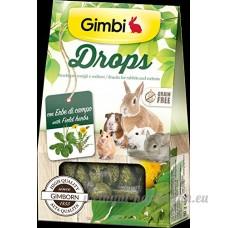 Drops avec herbes de Champ Snack pour Rongeurs sans céréales 50g - B06Y2W9QTQ
