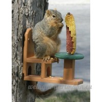 Songbird Essentials SE526 polyester recycl- Squirrel Table & Chair - B007SOWP5Y