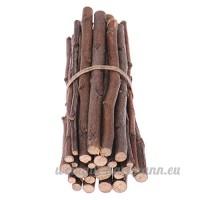 Pet Snacks Apple Wood Bâtons à mâcher pour écureuil Lapins cochons d'Inde chinchilla Parrot - B072HJ216Z