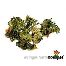 zoodi® brocoli Snack 50g - B077Y423TP
