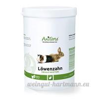 AniForte Poudre de pissenlit 1L Rongeurs Doublure u.a. pour lapin cochon d'Inde Hamster Chinchilla de produit naturel pour rongeur - B00OCH6K74