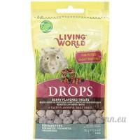 Living world RC Hagen 60306 Chute Hamster Treat  73 7gram  field Berry - B000CMZ6E6