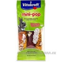Vitakraft Mini Pop–au micro-ondes Mini Maïs friandises pour animal domestique Lapins  cochons d'Inde et d'autres petits animaux  Sac de 170 1gram - B0002DJOES