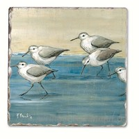 Sandpipers on the Beach Single Tumbled Tile Coaster - B00NO5DSW0