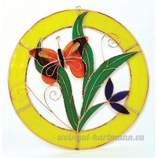 Petit Panneau de fenêtre Motif cercles Orange - B00PYESHZW
