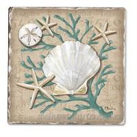Linen Shells Single Tumble Tile Coaster - B00NO5DZ6O