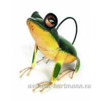 Tree Frog Watering Can - B00DW41L36