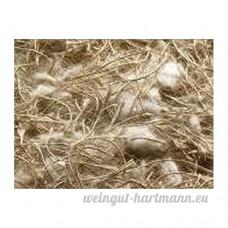 Mibo - Matériel de nid pour oiseaux exotiques - B06XKQZVZB