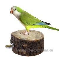 Eowder 1x Parrot Cage à oiseaux jouet support en bois (9–10cm) - B01MTO6DWD