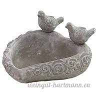 Bain d'Oiseaux Oiseau Mangeoir Abreuvoir en Ciment - B01N206XG3