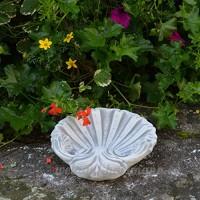 gartendekoparadies.de Petit Quaich Jolie Coquillage Bain d'oiseaux abreuvoir pour oiseaux en pierre au gel - B01M5HQZS8