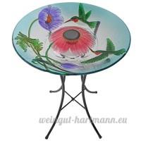 Peaktop Colibri jouer autour de plaque en verre Bain d'oiseau Colibri Multi-Color - B01BG5IHLQ