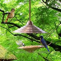 Outdoor  jardin mangeoire pour oiseaux  Mangeoire à  20× 38 5cm - B071FGBWYL