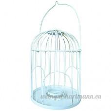 Caillard PFMACA Mangeoire Cage - B00SWPO4DE