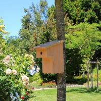 Nichoir oiseaux à balcon pour mésanges charbonnières Ø32mm en bois  Fabrication artisanale - B06XSN88KF