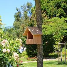 Nichoir oiseaux semi ouvert pour Rougegorges ... en bois massif  fabrication artisanale - B06XS96Q1K