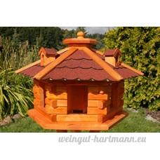Deko-Shop-Hannusch Nichoir à oiseaux hexagonal - B000XSX98O