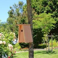 Nichoir oiseaux tipi pour mésanges bleues Ø28mm en bois massif  fabrication artisanale - B06XRVQF48
