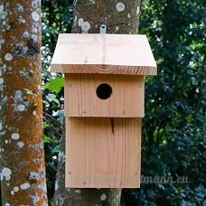 Nichoir balcon Ø28 pour oiseaux  Fabrication artisanale en bois - Ouverture Facile - Installation simple et rapide - B07DCDXNH2