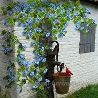 KINGDUO 100Pcs Clematis Fleurs Graines Vivace Plante Jardin Décoration Vignes Escalade Clematis Seed-Bleu - B07DCHT1SV