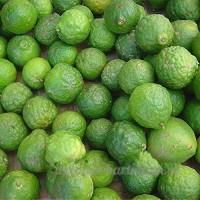 KINGDUO 20Pcs Lime Graines Citrus Aurantifolia Organic Fruits Graines De Citron Arbre Bonsaï Pour Maison Jardin - B07D8HR7RL