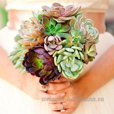 KINGDUO 100 Pcs Mixte Lithops Graines Rares Mini Succulentes Pierre Bonsai Pseudotruncatella Fleurs - B07DCK9Y2T